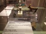 shrewsbury museum 072