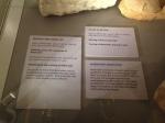 shrewsbury museum 135