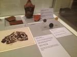 shrewsbury museum 180
