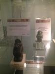 Wrexham Museum (27)