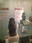 Wrexham Museum (28)