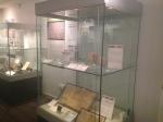 Wrexham Museum (37)