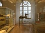 Bonn Egyptian Museum (184)