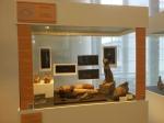 Bonn Egyptian Museum (237)