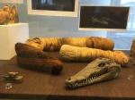 Bonn Egyptian Museum (240)