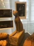 Bonn Egyptian Museum (242)
