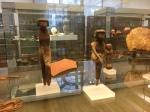 Bonn Egyptian Museum (303)