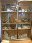 Bonn Egyptian Museum (347)