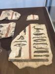Bonn Egyptian Museum (36)