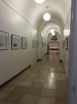 Bonn Egyptian Museum (9)